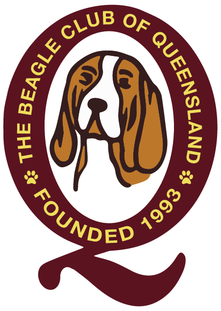 Beagle Club of Queensland Retina Logo