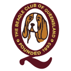 Beagle Club of Queensland Sticky Logo Retina